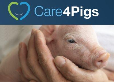 Initiative Care4Pigs