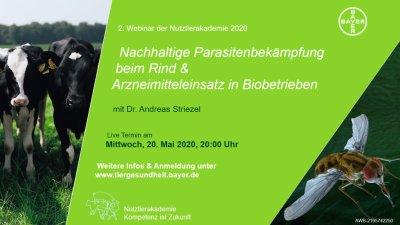 Kostenloses Webinar: Nachhaltige Parasitenbekämpfung beim Rind & Arzneimitteleinsatz in Biobetrieben