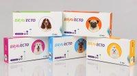 BRAVECTO®: Erstes Spot-on für den Hund mit 12 Wochen Schutz