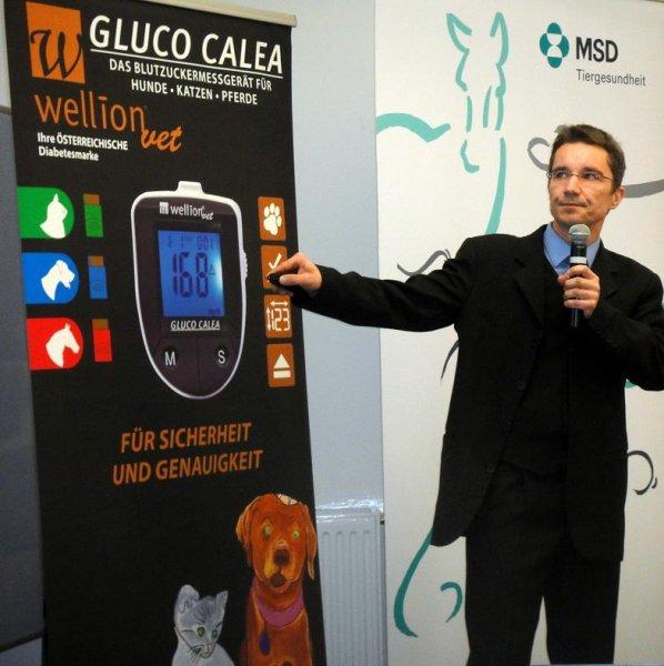 Diabetes-Experte Dr. Florian Zeugswetter
