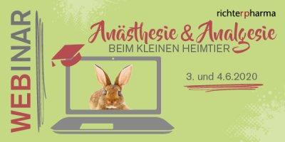 2-TEILIGES WEBINAR: Anästhesie & Analgesie beim kleinen Heimtier; Bildquelle: Richter Pharma
