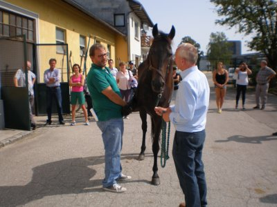 """Seminar�Workshop """"Anwendung der Ozontherapie am Pferd"""""""