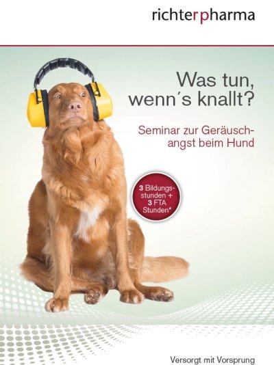 Was tun, wenn´s knallt? - Seminar zur Geräuschangst beim Hund