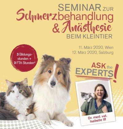 Seminar zur Schmerzbehandlung & Anästhesie beim Kleintier