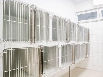 Schlievet-Käfige in Modul-Bauweise