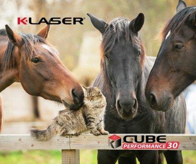 Schmerztherapie mit K-Laser von Rückenschmerzen  bei Pferden