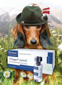 Virbagen canis B - die sinnvollere Borrelioseimpfung