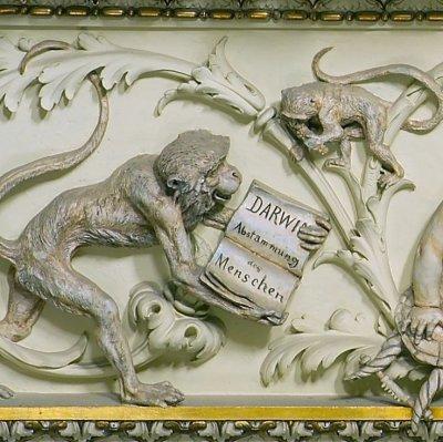Charles Darwin-Fries im NHM Wien; Bildquelle: NHM Wien, A. Schumacher