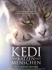 Kino aus Katzenperspektive: 'Kedi - Von Katzen und Menschen'