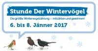 Stunde der Wintervögel 2017