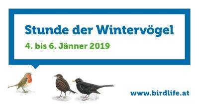 Stunde der Wintervögel 2019