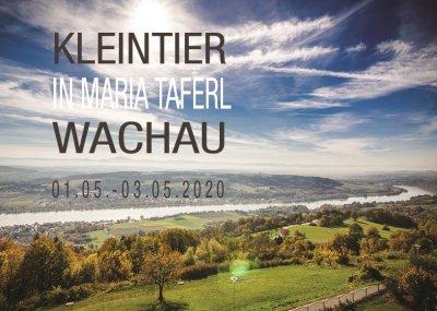 KLEINTIER Wachau 2020