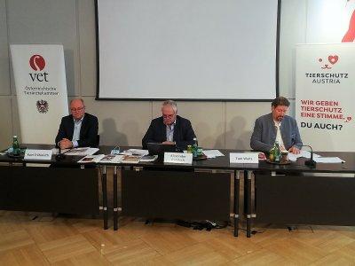 Kurt Frühwirth, Alexander Rabitsch und Thomas Waitz