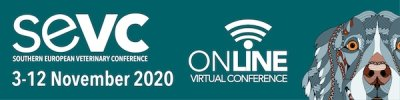 The SEVC 2020 will become a virtual congress